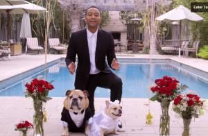 John Legend et Chrissy Teigen : Maîtres de cérémonie d'un mariage qui a du chien