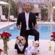 Le chanteur John Legend et sa femme Chrissy Teigen marient leurs deux chiens Puddy et Pippa pour la bonne cause, le 1er avril 2015 sur Youtube