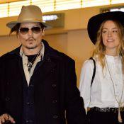 Johnny Depp et Amber Heard négligents : Leurs deux chiens risquent la mort