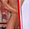 Brent Ray Fraser peint avec son pénis, dans  Incroyable Talent  saison 10 (épisode 3), le mardi 3 novembre 2015 sur M6.
