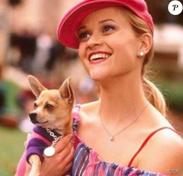 Reese Witherspoon et le chien Moonie (Bruiser Woods dans le film) - La Revanche d'une blonde