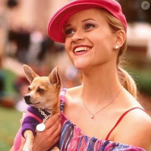 """Image D Une Blonde reese witherspoon : la star de """"la revanche d'une blonde"""" en deuil"""