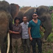 """Leonardo DiCaprio milite pour des éléphants et """"se lâche"""" avec Jennifer Lopez"""