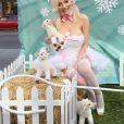 Courtney Stodden, habillée très sexy, défend la cause animale à travers l'association PETA, en plein coeur de Hollywood. Le 24 novembre 2015
