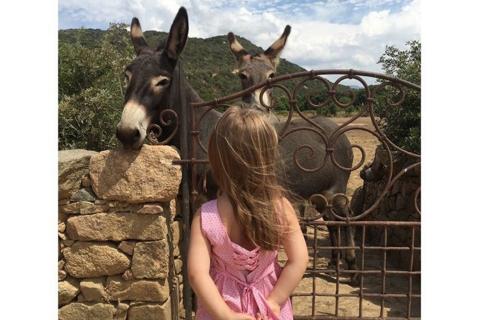 Carla Bruni et Giulia Sarkozy : Instants complices devant deux ânes corses
