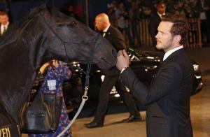 73e Mostra de Venise : Une clôture très à cheval, Emma Stone excusée
