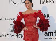 """Katy Perry annule son concert à cause d'une mystérieuse """"urgence familiale"""""""