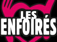 Les Enfoirés 2017 : MC Solaar et Grégoire signent le nouvel hymne