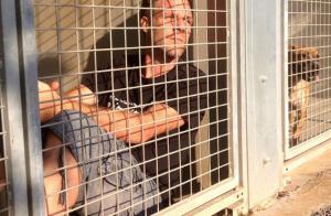 Rémi Gaillard : Furieux contre la SPA, il claque finalement la porte !