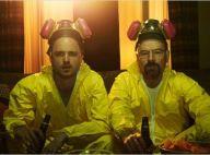 Breaking Bad : Une star dérape lourdement sur l'homosexualité...