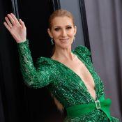 Céline Dion fait tourner la tête d'un fan avec son micro entre les seins !