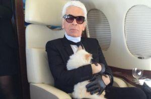 Karl Lagerfeld : Choupette lui souhaite une joyeuse fête des Pères