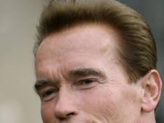 Arnold Schwarzenegger : Go between
