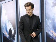 """Harry Styles : Le soldat de """"Dunkerque"""" en couple avec une Française ?"""