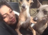 Kylie Jenner : Sa dernière folie... Pour ses chiens !