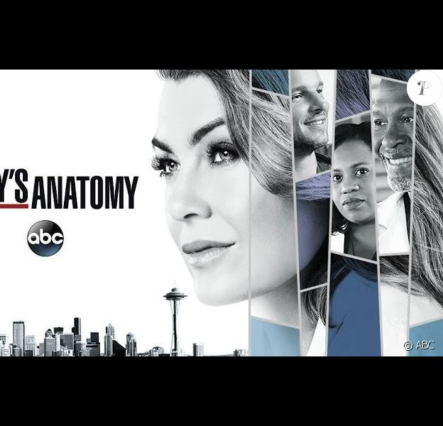 Grey's Anatomy, série de la chaîne ABC