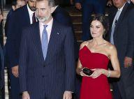 Letizia d'Espagne: Épaules dénudées, tenue vitaminée... Looks réussis en Argentine
