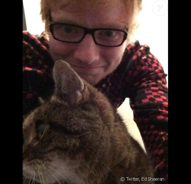 Ed Sheeran et son chat Graham, Twitter, le 23 janvier 2014.