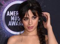 Camila Cabello : Elle a volé un objet chez Kate Middleton et le prince William !