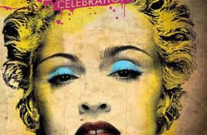 Madonna : Un portrait à la Warhol pour fêter ses trente ans... de carrière !