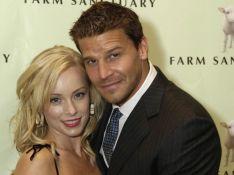 David Boreanaz : sa femme Jaime Bergman va donner naissance à...