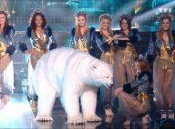 Miss France 2020 : Pourquoi y avait-il un ours blanc pendant le show ?