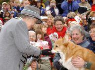 Famille royale : Pour Noël, elle prépare un menu spécial pour les petits chiens
