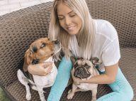 Jessica Thivenin, Maylone et ses chiens sous le même toit : les critiques fusent