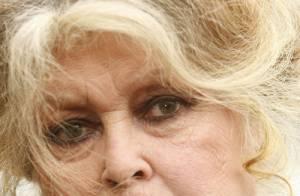 Chienne de vie ! Le gardien de la Fondation Brigitte Bardot a obtenu gain de cause...