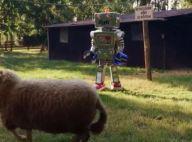 Mask Singer – le Robot démasqué : découvrez qui se cachait derrière le costume