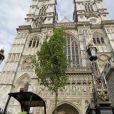 Mise en place des érables anglais dans l'Abbaye de Westminster, le 26 avril 2011, trois jours avant le mariage du prince William et Kate Middleton.