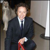 Stéphane Bern : les chiens de ses amies les stars... lui ont piqué la vedette !
