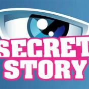 Secret Story déprogrammée en 2010 ? Les Français disent... oui !