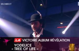 25e Victoires de la Musique : Gros délire de Hugues Aufray et son copain... Hugh, Maxim Nucci et Yodelice triomphent !