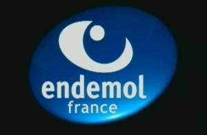 TF1 et Endemol lourdement condamnés pour contrefaçon