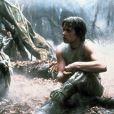 Mark Hamill, inoubliable Luke Skywalker dans la saga  Star Wars ...