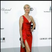 AmfAR 2010 - Joely Richardson : Au coeur d'une année difficile, elle fait face avec dignité...