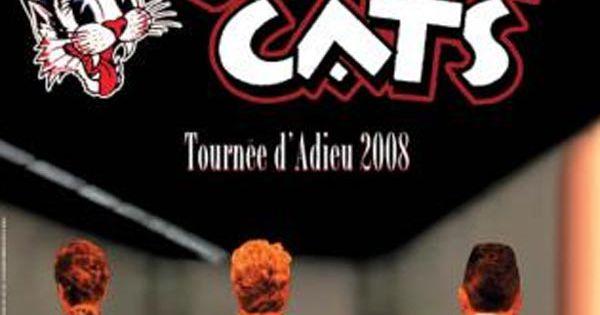 Stray Cats Tournee En France