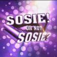 Premières images de Sosie or not sosie ? (1er janvier 2011 sur TF1, en prime-time)