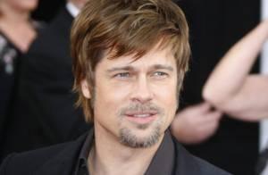 Brad Pitt : une maison écolo à 14 millions de dollars !