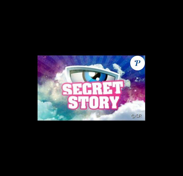 Ce soir, le prime de Secret Story sera placé sous le signe du révélateur d'émotions.