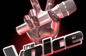 The Voice : Le jury sera composé de Florent Pagny, Sharleen Spiteri et...