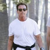 Arnold Schwarzenegger et Maria Shriver : Bientôt divorcés ?