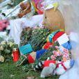 La mort de 28 personnes dont 22 écoliers belges de 10 à 12 ans le 13 mars 2012 dans un accident de car en Suisse a terriblement choqué la Belgique...