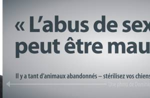 Dominique Strauss-Kahn et la PeTA : La campagne choc pour stériliser les bêtes