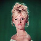 Brigitte Bardot, Pamela Anderson, Marilyn Monroe : Le porno chic mis à l'honneur