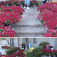 Les 10 000 roses que ses fans ont posé devant la tombe de Michael Jackson