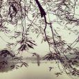 Twitter de Laeticia Hallyday - Un peu de Poésie pour finir la journée au bord du Lac Hoan Kiem en plein centre de #Hanoi