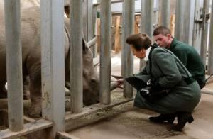 Princesse Anne : Une infidélité à ses chevaux pour les beaux yeux des éléphants