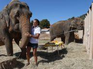 Stéphanie de Monaco : Aux petits soins de Baby et Nepal, le bonheur à Roc Agel